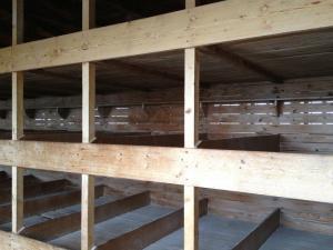 In queste celle di legno erano stivati a dormire centinaia di Prigionieri